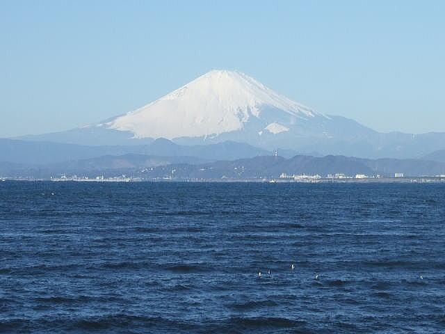 江の島散策 (H21.1 ...